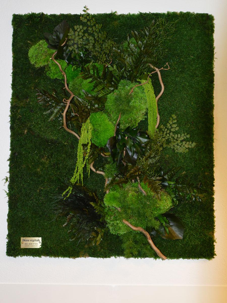tableau végétation stabilisée décorative